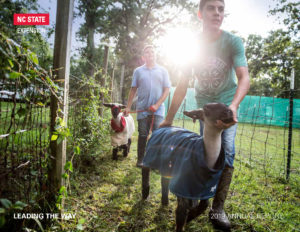 Cover of 2019 NC State Extension Annual Report shows two young boys leading goats in a field with the sunset in the background