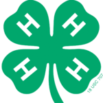 The 4-H clover logo represents the youth development efforts of NC State Extension.