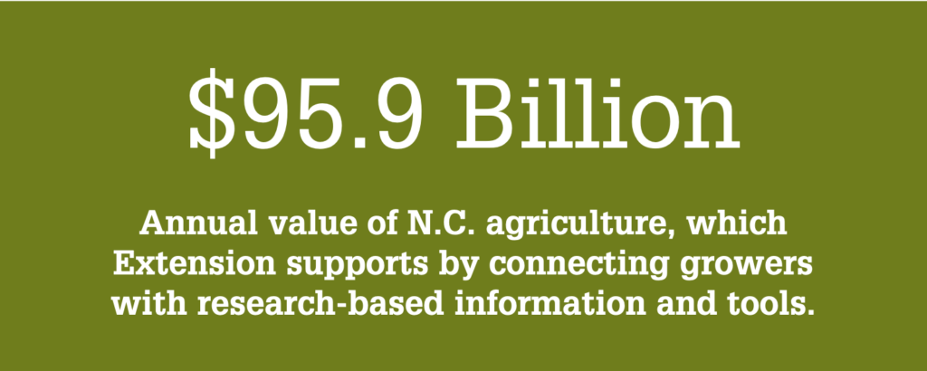 NC State Extension supports the $95.9 billion North Carolina agriculture industry by connecting growers with the research-based information and technology they need